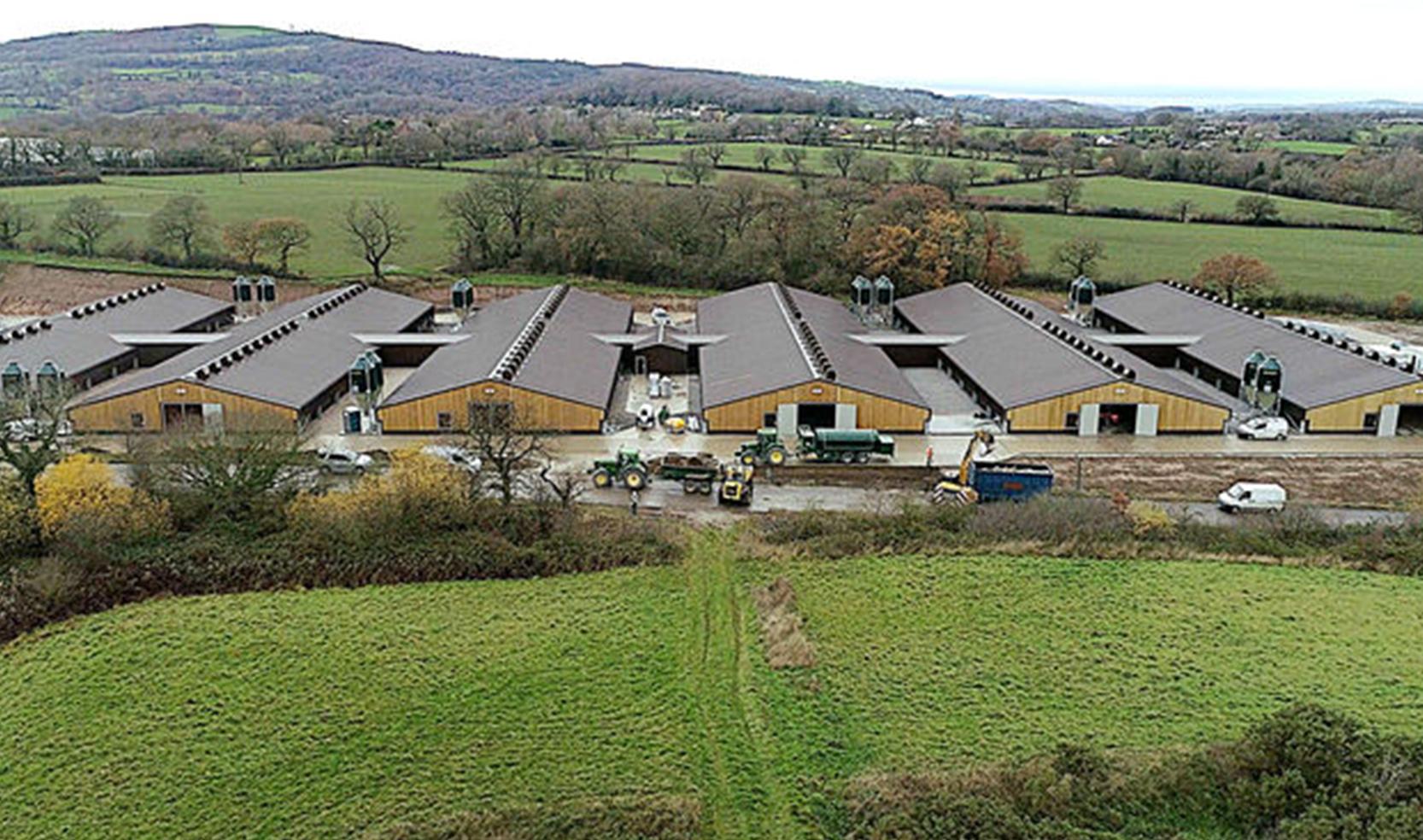 New state-of-the-art rearing farm for Aviagen Turkeys