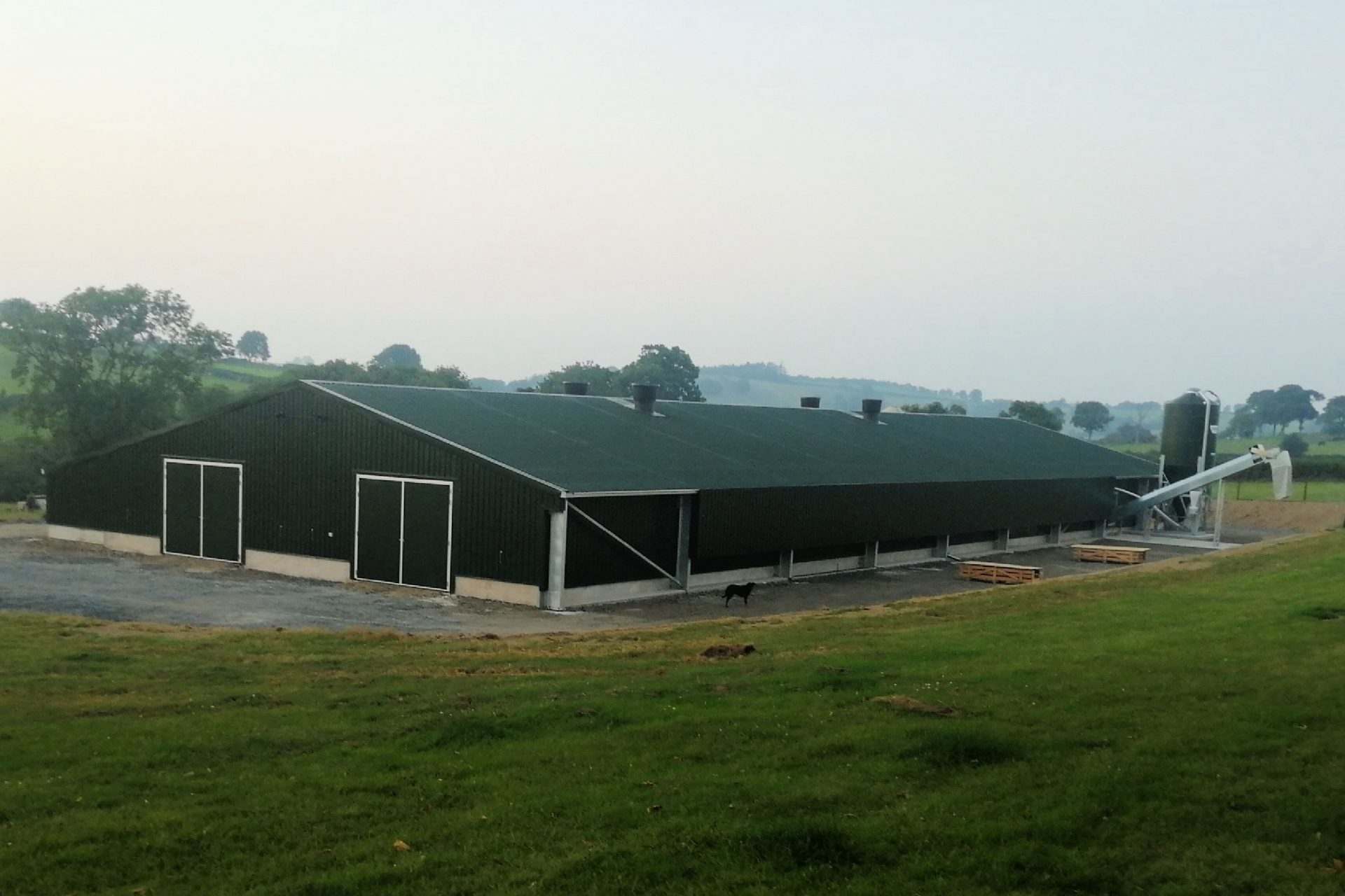 Powell & Co Free Range Organic Layers Poultry Shed