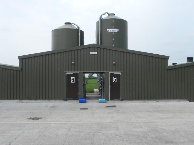 broiler sheds
