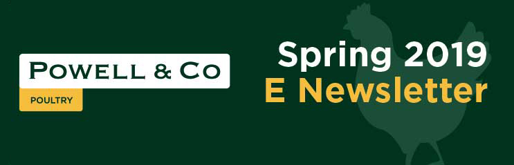 Powell & Co Spring 2019 E-Newsletter