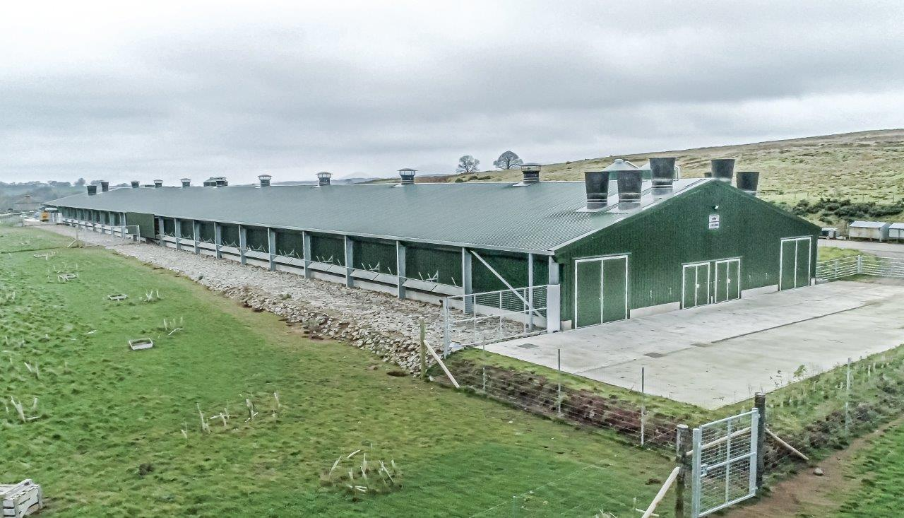 Powell & Co Construction Ltd Free Range Poultry Unit in Cumbria